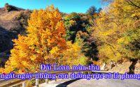 Dai Loan mua thu 1