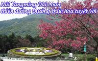 nui yangming Dai Loan 3