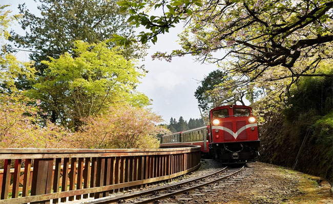 duong sat Alishan Railway