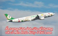 meo hello kitty o dai loan 6