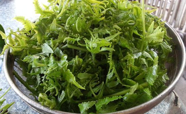 salad duong xi 2