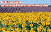 le hoi hoa Ta Shee Blooming Oasis 4
