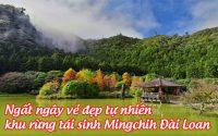 rung tai sinh mingchih 3