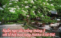 le hoi hoa tung Hakka o xu dai