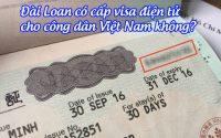 dai loan co cap visa dien tu cho cong dan viet nam khong